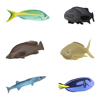 Coleção de peixes coloridos