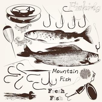 Coleção de peixes e equipamentos de pesca