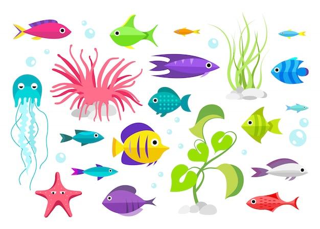Coleção de peixes. estilo dos desenhos animados. ilustração, de, aquário, habitantes