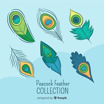 Coleção de penas de pavão moderno mão desenhada
