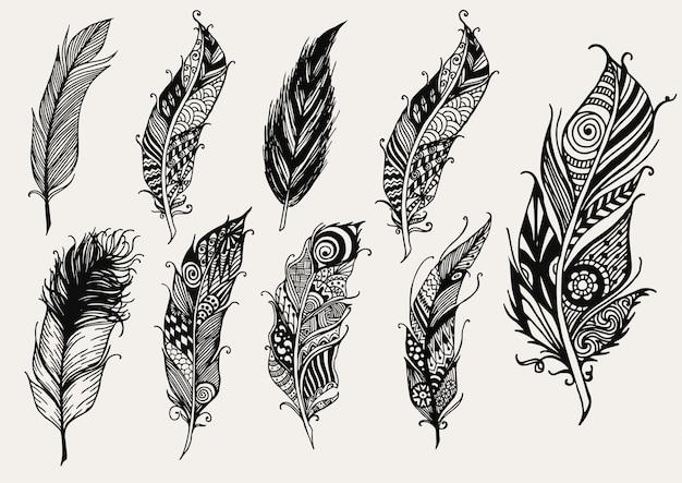 Coleção de penas desenhadas à mão