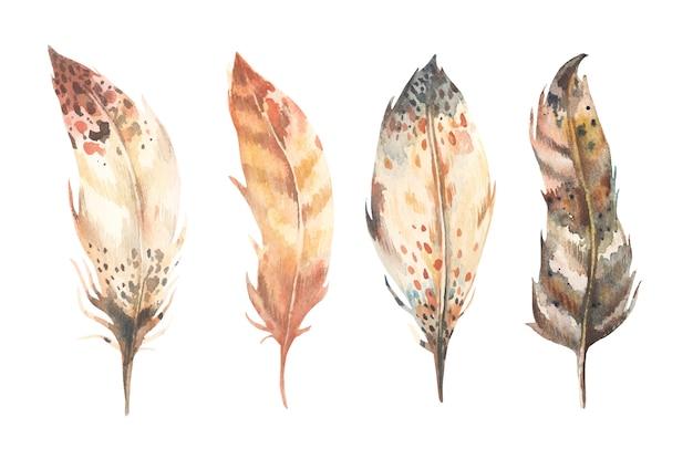 Coleção de penas em aquarela mão desenhada.