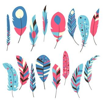 Coleção de penas multicoloridas