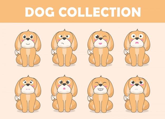 Coleção de personagens de cachorro fofo