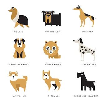 Coleção de personagens de raças de cães diferentes e letras de raça em ilustrações inglesas