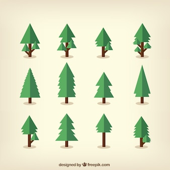 Coleção de pinheiros verdes