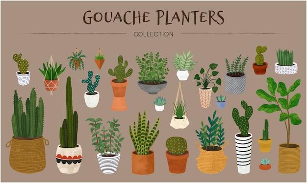 Coleção de plantadores de guache