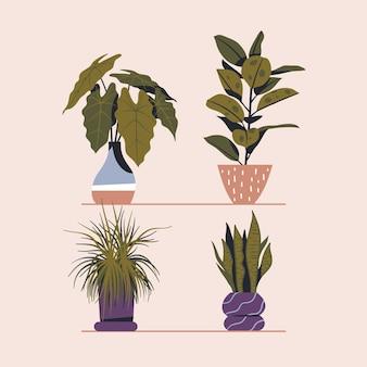 coleção de plantas de casa desenhada à mão