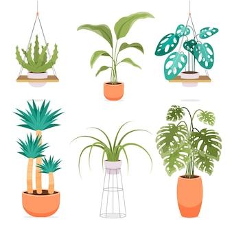 Coleção de plantas de casa planas orgânicas