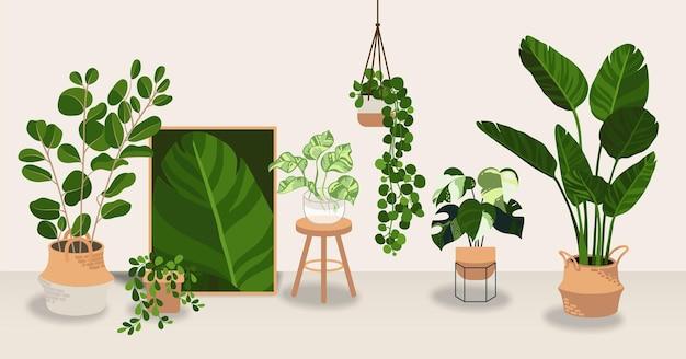 Coleção de plantas decorativ house