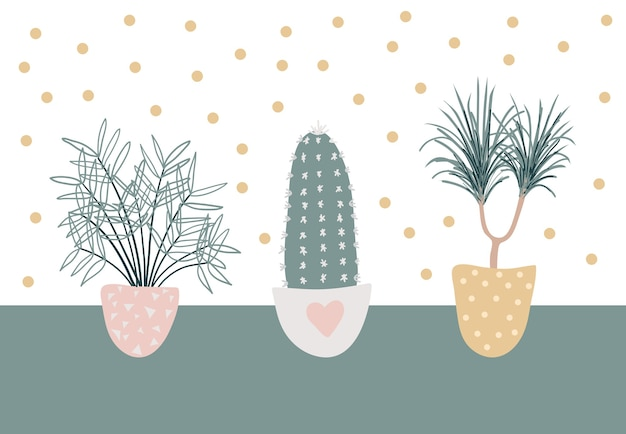 Coleção de plantas decorativas. conjunto de belas decorações naturais para casa.