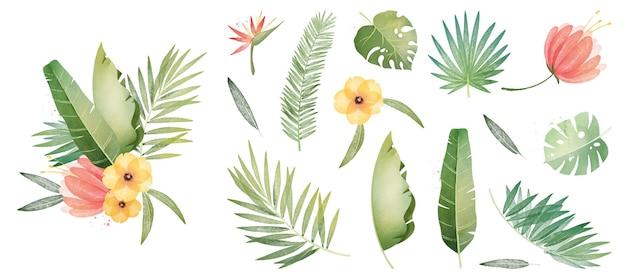 Coleção de plantas e folhas tropicais