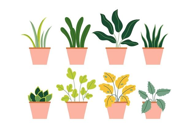 Coleção de plantas em vasos de decoração de casa de jardim interno