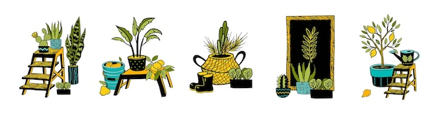 Coleção de plantas em vasos de vetor. mão-extraídas plantas de casa e elementos de decoração para casa. conjunto de suculentas, cacto, estante de livros, cesta, material de jardim, ameixa, galho de damasco, limoeiro