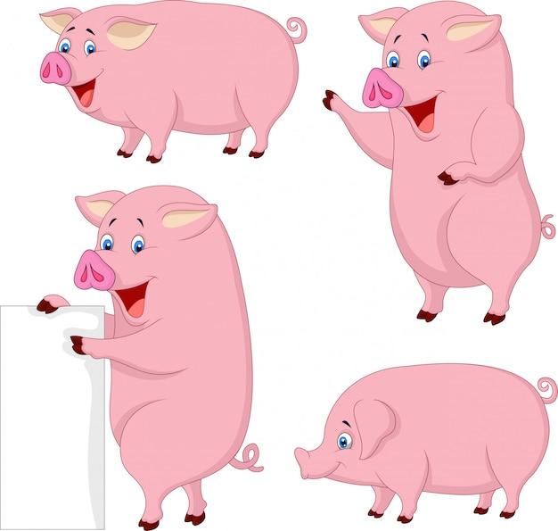 Coleção de porco gordo dos desenhos animados