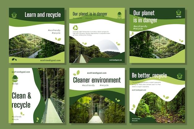 Coleção de postagens do instagram de ecologia