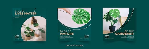 Coleção de postagens instagram com design da natureza