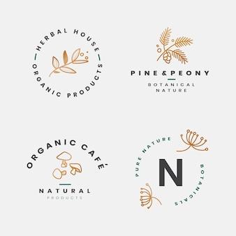 Coleção de quadros botânicos florais