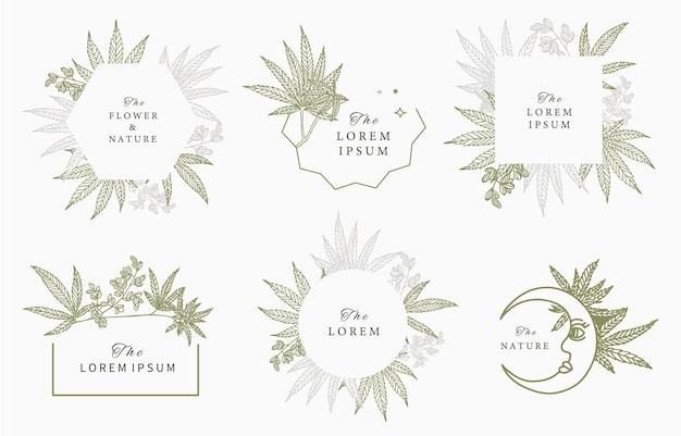Coleção de quadros de cannabis.