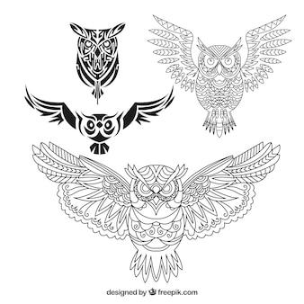 Coleção de quatro corujas