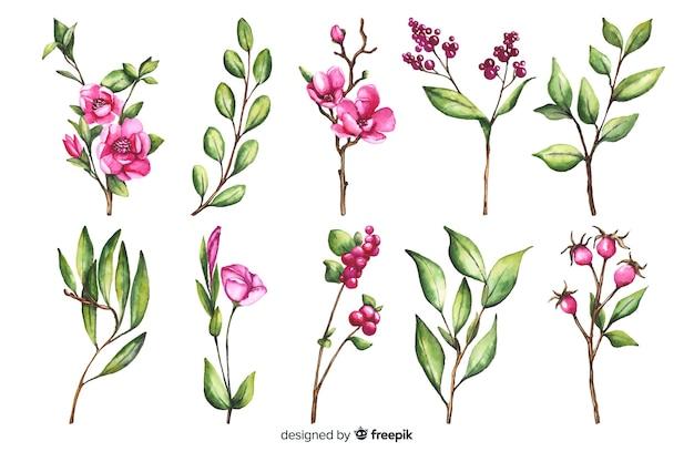Coleção de ramo floral aquarela colorida