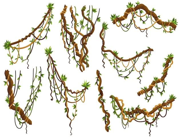 Coleção de ramos retorcidos de lianas selvagens
