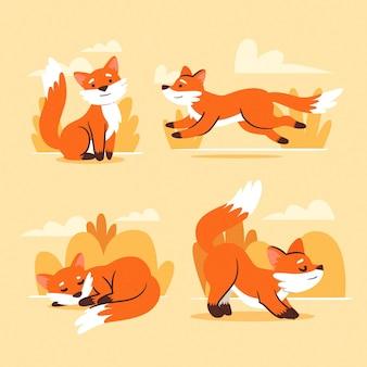 Coleção de raposa desenhada de mão design