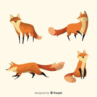Coleção de raposas aquarela fofos