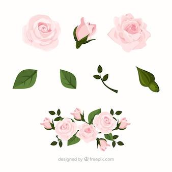 Coleção de rosas em design realista