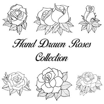 Coleção de rosas preto e branco desenhadas à mão