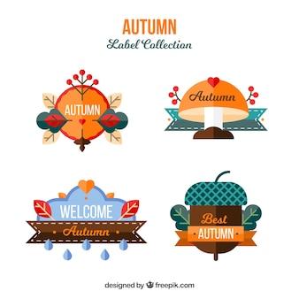 Coleção de rótulo lindo outono com design plano