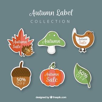 Coleção de rótulos de outono com a natureza