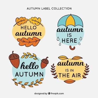 Coleção de rótulos de outono com folhas