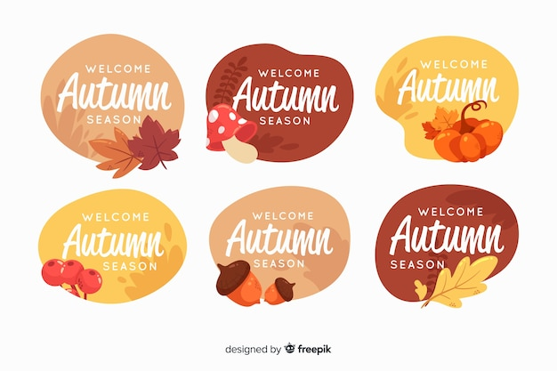 Coleção de rótulos de outono em estilo simples