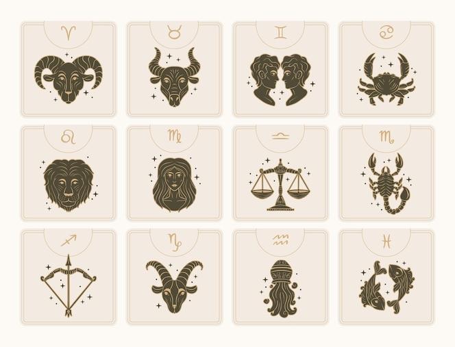 Coleção de signos do zodíaco desenhada à mão
