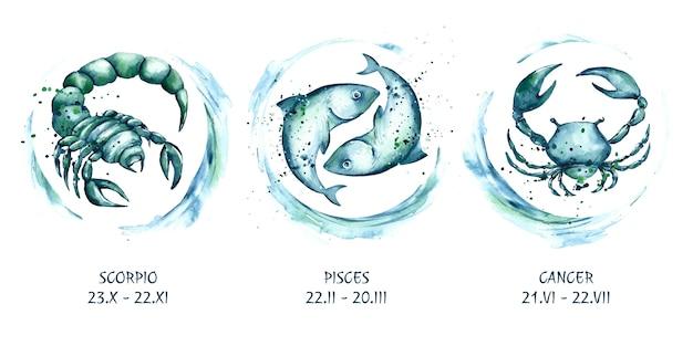 Coleção de signos do zodíaco pintados à mão