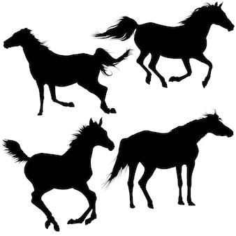 Coleção de silhueta de cavalo
