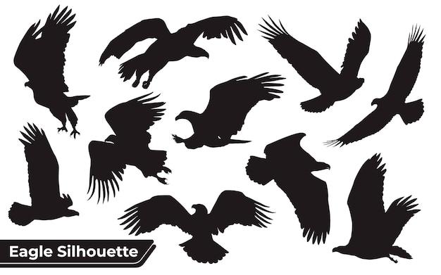 Coleção de silhuetas de águia pássaro em diferentes posições