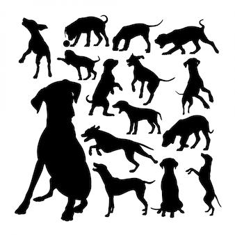 Coleção de silhuetas de cachorro dálmata