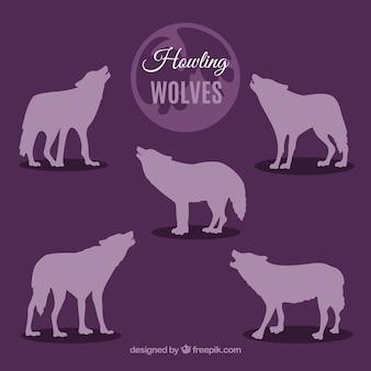 Coleção de silhuetas de lobos uivantes roxos