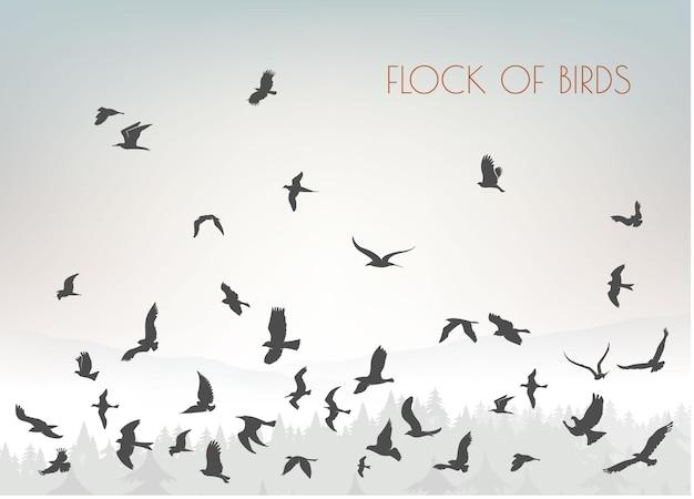 Coleção de silhuetas de pássaros Vetor Premium