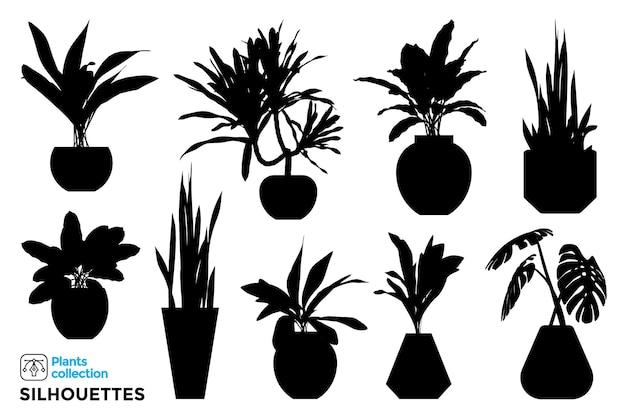 Coleção de silhuetas isoladas de plantas e árvores em vasos de jardim