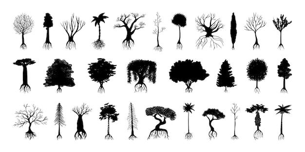 Coleção de silhuetas negras de árvores