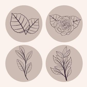 Coleção de símbolos de folhas e flores