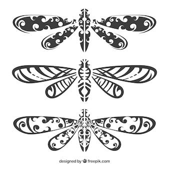 Coleção de tatuagem dragonfly