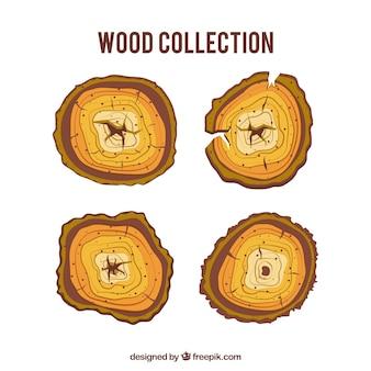 Coleção de troncos de árvore