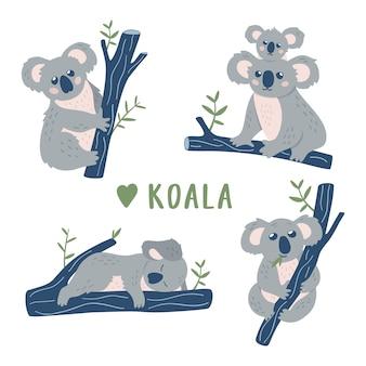 Coleção de ursos koala dos desenhos animados.