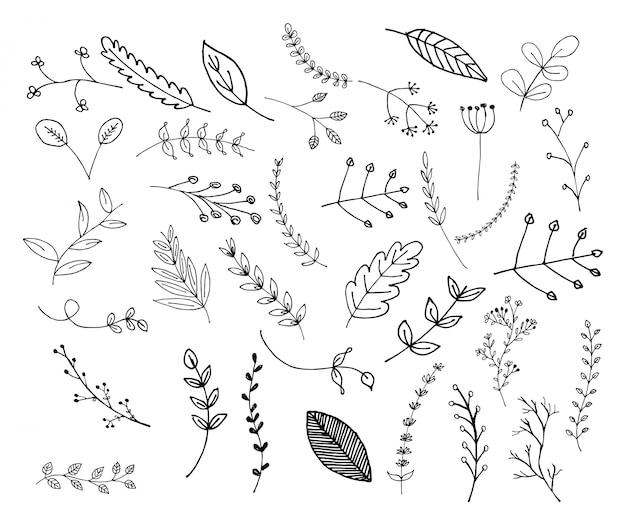 Coleção de várias folhas doodle