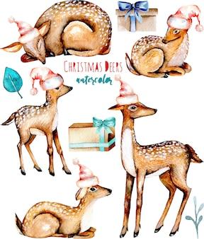 Coleção de veados de natal em aquarela