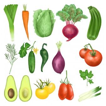 Coleção de vegetais orgânicos
